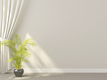 White  Curtains With Plant