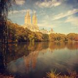 Zdjęcie Central Parku