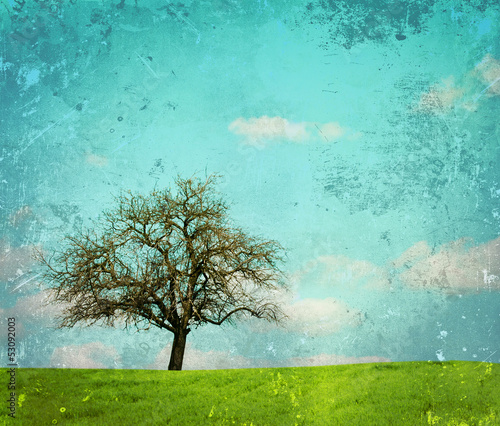 Stickers pour portes Vert corail Vintage image of landscape with oak tree