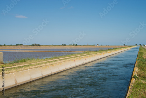Spoed Foto op Canvas Kanaal Rice paddy irrigation