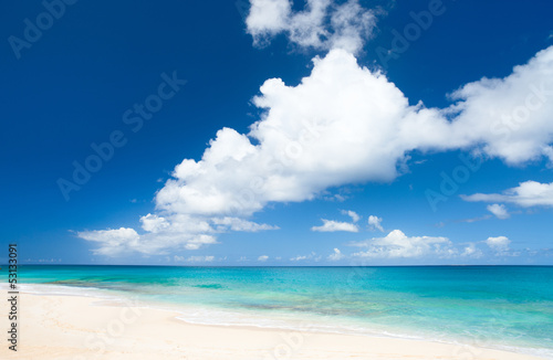 Foto auf Gartenposter Strand Caribbean beach and sea