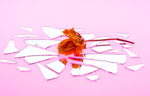 Kiss By A Wilted Rose Is Shattered Love
