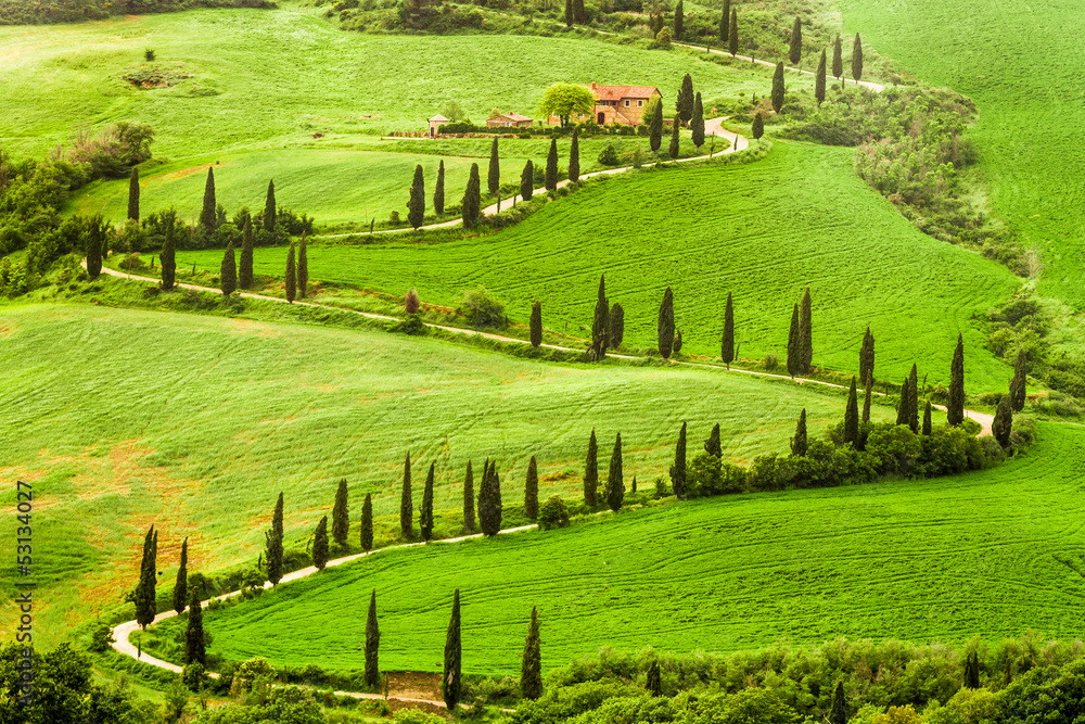 Fototapety, obrazy: Winding road to agritourism in Italy on the hill
