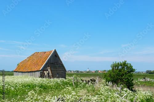 Poster Sheep Barn at island Texel