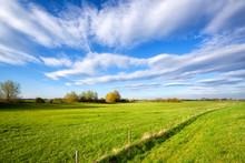 Summer Grassland And Blue Sky