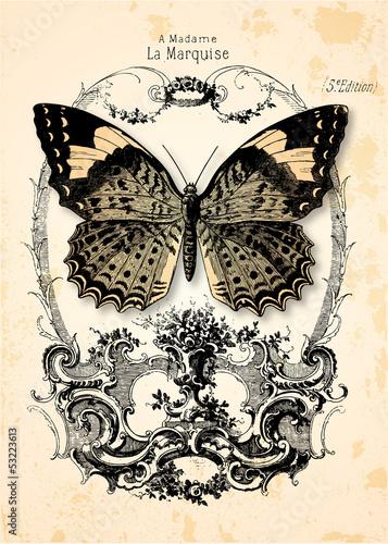 Carta da parati Fond papillon