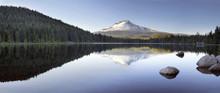 Mt Hood Reflection On Trillium...