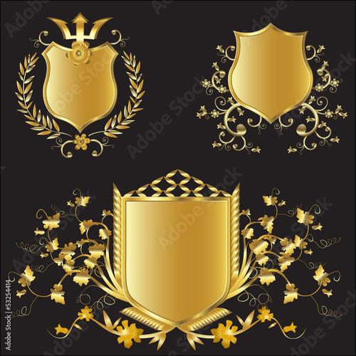 Obraz na plátně vector golden shields