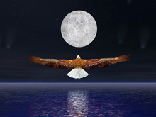 Eagle Flying To The Moon - 3D ...