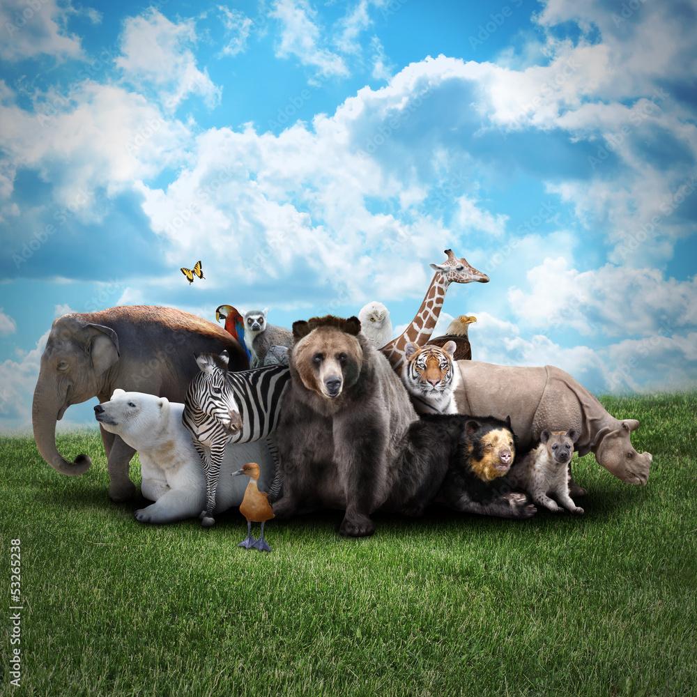 Foto-Kissen - Zoo Animals on Nature Background