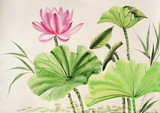 Watercolor painting of pink lotus flower