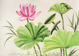 Obraz Watercolor painting of pink lotus flower