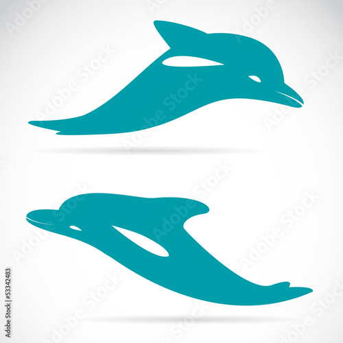 Staande foto Dolfijnen Vector image of an dolphin on white background