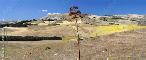 Sicily country, Caltanissetta - Agnone district, Italy Canvas Print