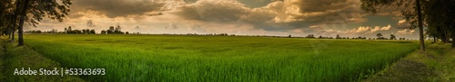 Fototapeta premium Polish summer landscape, panorama with clouds and trees