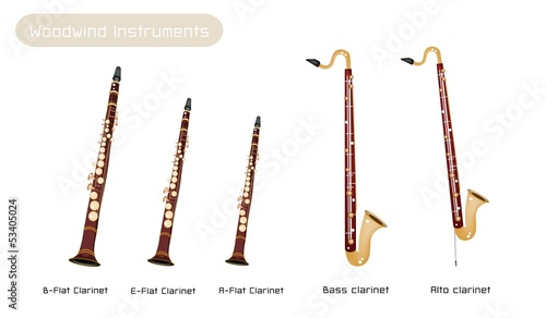Foto Various Kind of Clarinets Isolated on White Background