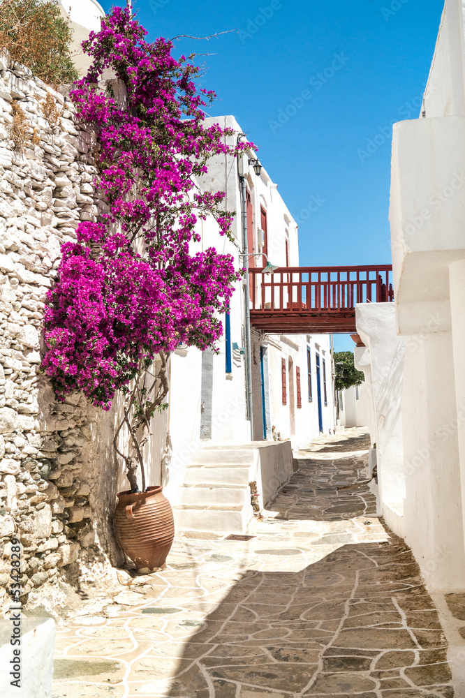 Fototapety, obrazy: Traditional greek alley on Sifnos island, Greece