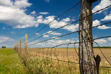 Barbed Wire Fence In Kansas Pa...