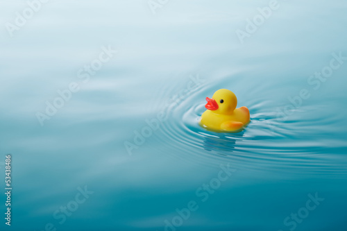 Photo  yellow rubber duck