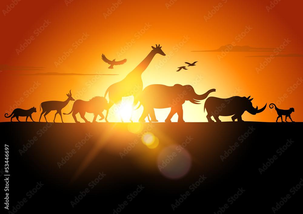 Fototapety, obrazy: Zachód słońca na Safari
