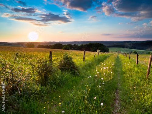 Fotografia  sunset trail