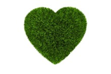 Grassy Heart Isolated