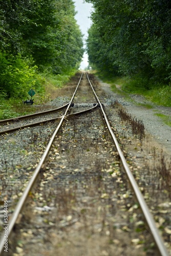 Railroad Merging Railroad Tracks