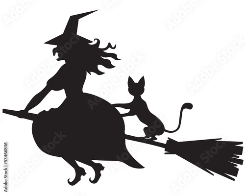 Obraz na plátně Witch on a broom and cat