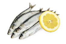 Five Sardines