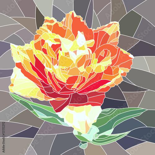 wektorowa-ilustracja-pomaranczowy-tulipan