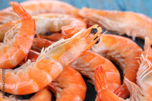 Shrimps on blue wooden table