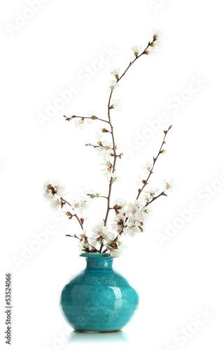 Fotografie, Obraz  Flowering branches in vase isolated on white