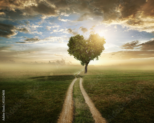 Love Tree Tablou Canvas