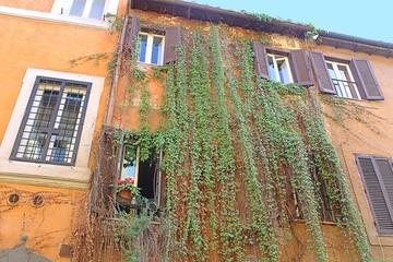 Fototapeta Rzym Trastevere in Rome