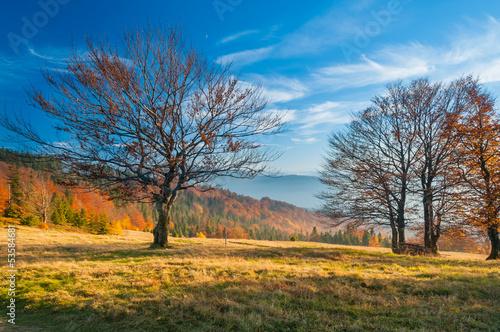 gorski-jesienny-krajobraz-w-beskidach