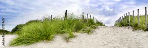 Staande foto Blauwe hemel Sand dune at the beach in scheveningen netherlands