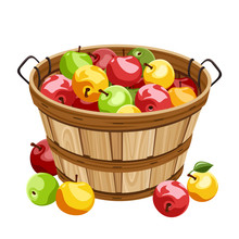 Wooden Basket With Colorful Apples. Vector Illustration.