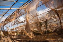 Broken And Abandonned Greenhouse