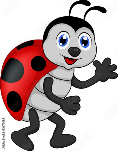 Poster Coccinelles funny lady bug cartoon