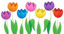 Image With Tulip Flower Theme 3