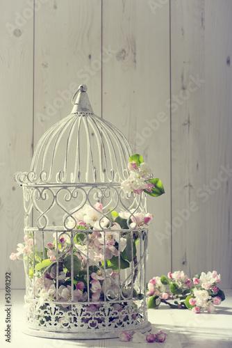 Foto-Schmutzfangmatte - Bird Cage (von Springfield Gallery)