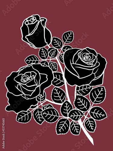 czarno-biale-roze-w-ciemnosci