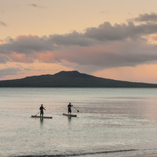 Stand Up Surfers And Rangitoto...