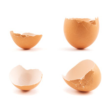 Egg Shell Cracked In Two Parts