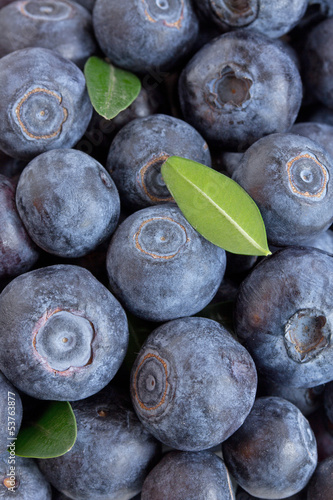 Blueberries on the old Board.