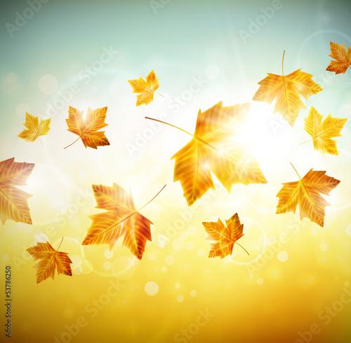 jesieni-tlo-z-liscmi