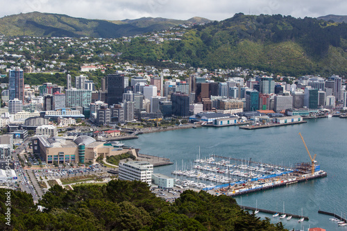 Wellington Skyline and Harbour