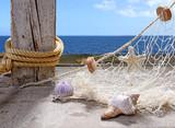 Fischernetz mit Meeresschätzen