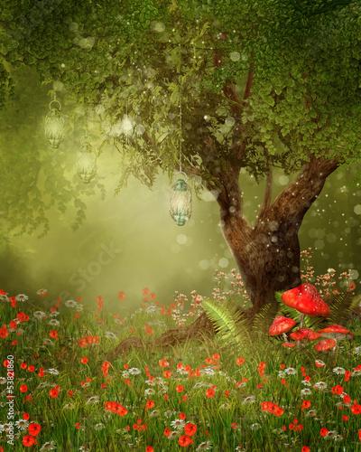 Fototapeta Stare drzewo na łące z czerwonymi makami i muchomorami obraz