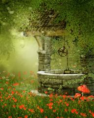 Fototapeta Fantasy Magiczna studnia na kolorowej łące